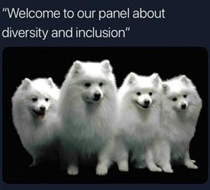 diversity meme white dog