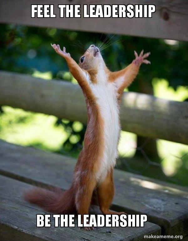 meme about leadership squirrel